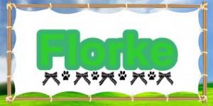 Florke